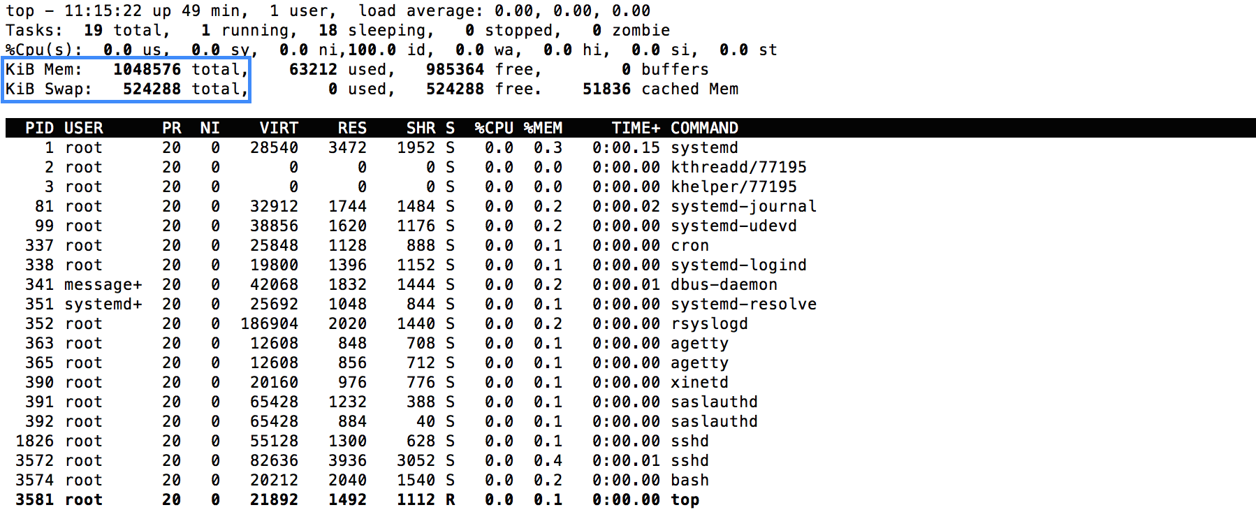 Check memory limits with top tool via Jelastic SSH gate
