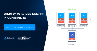 WildFly Managed Domain in Containers: Automatic Micro Clustering and Scaling