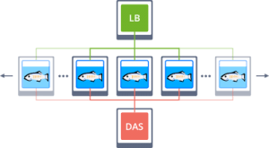 tcp without multicast