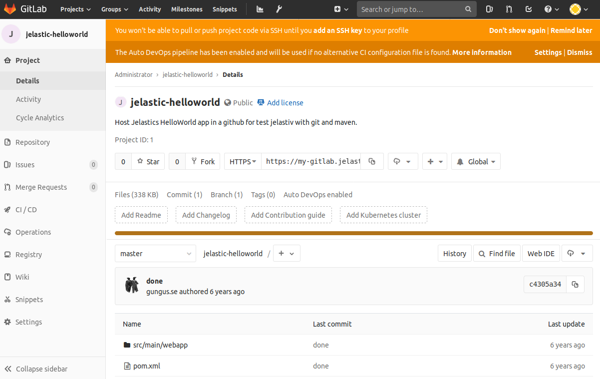 github project delivered
