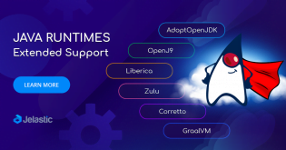Jelastic Extended Support of Java Runtimes: AdoptOpenJDK, Liberica, Zulu, Corretto, OpenJ9 and GraalVM