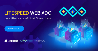 LiteSpeed Web ADC: Load Balancing, Dynamic and Static Cache, Integrated Cyber Protection and HTTP/3 Support