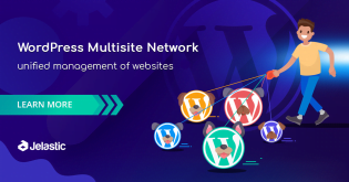 Setup WordPress Multisite Network with Domain Mapping and CDN