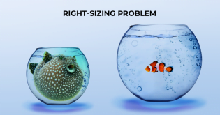 The Right-Sizing Problem in Cloud Computing, and How to Solve It