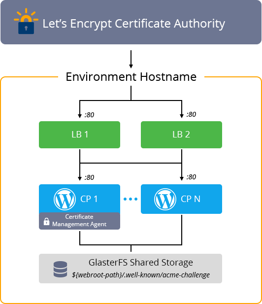 Let's Encrypt SSL Certificate Renewal with webroot
